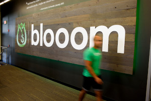 Blooom Careers